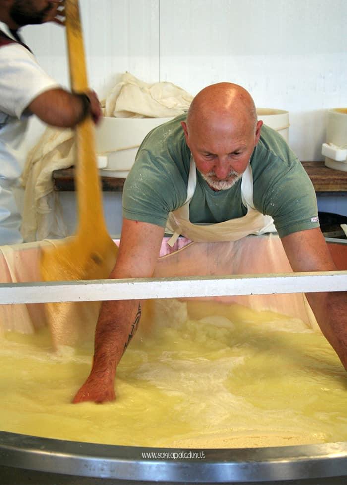 Parmigiano_Reggiano_lavorazione_formaggio