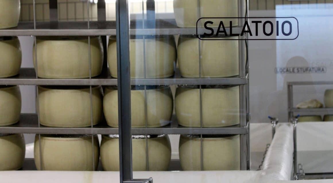 la salatura del Parmigiano Reggiano