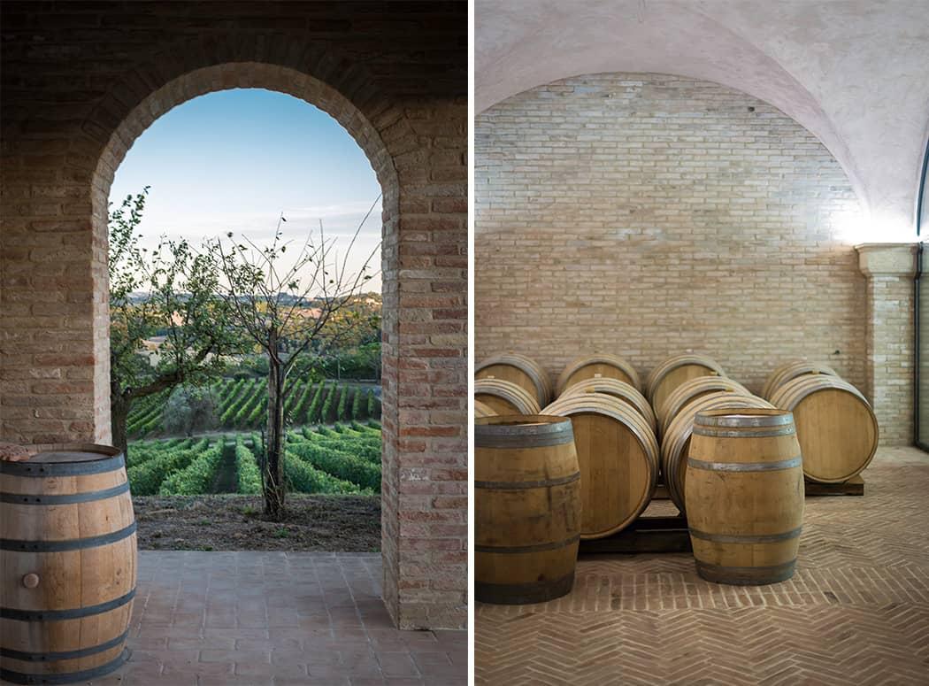 vini vigne di Chianciano