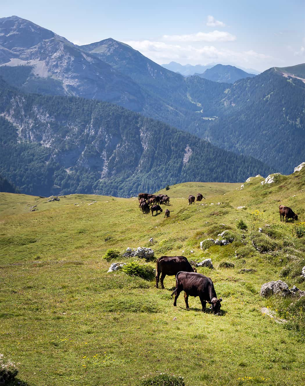 Monte Spinale Dolomiti di Brenta